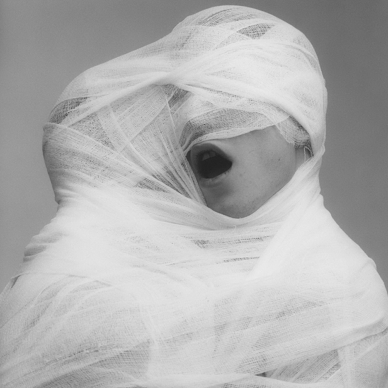 art_photo_20_century_mapplethorpe_robert_pic_white_gauze