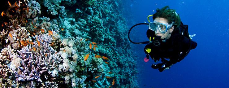 diving-phuket-5
