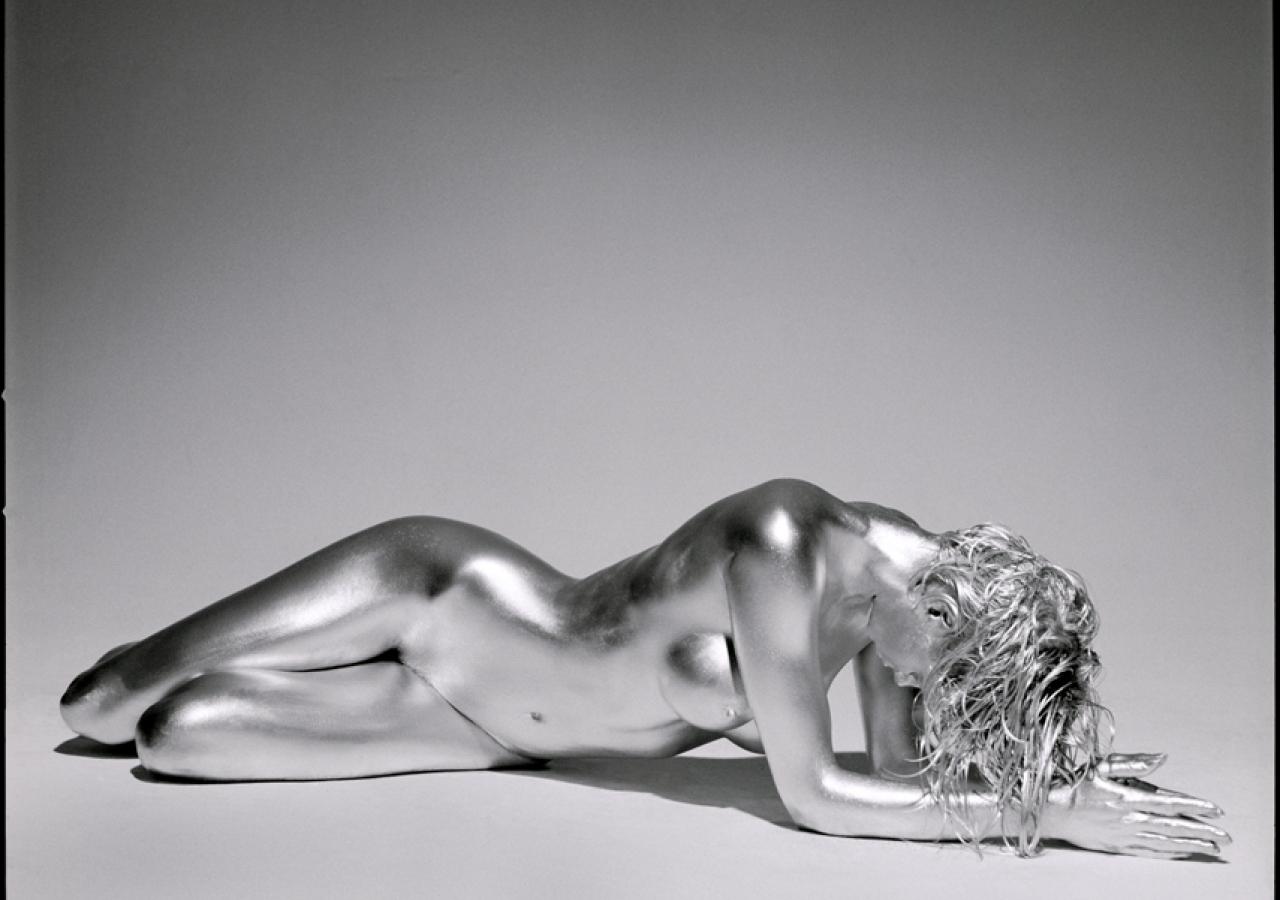 guido-argentini-silvereye-sandy-silver-laying-down
