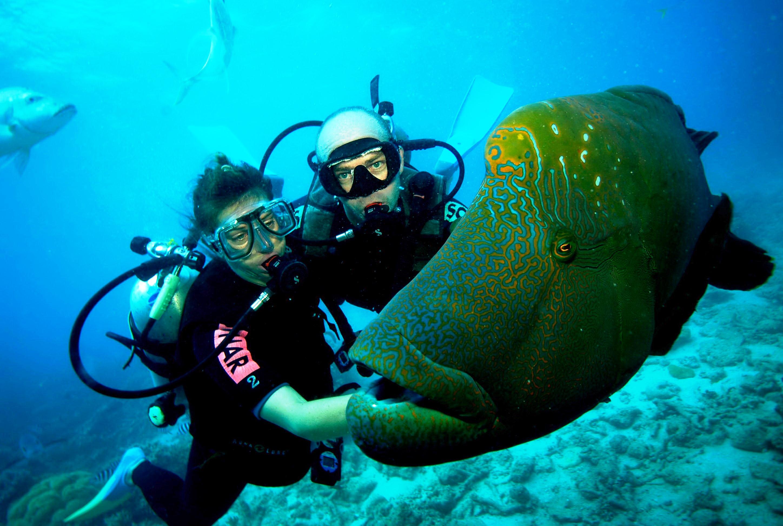 scuba-diving-jetty3