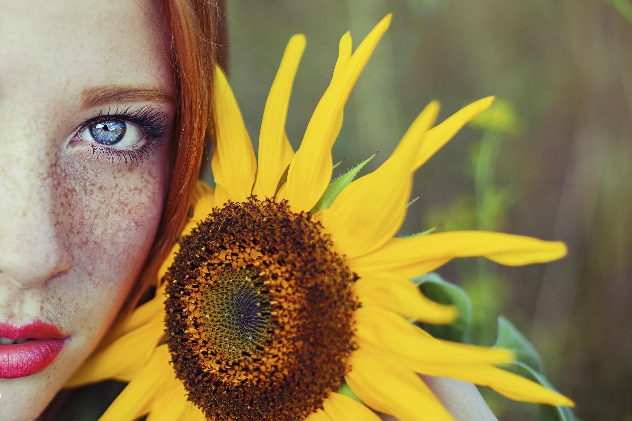 81602927-suns-flower