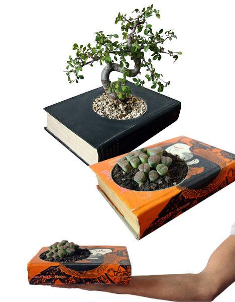 book-plant