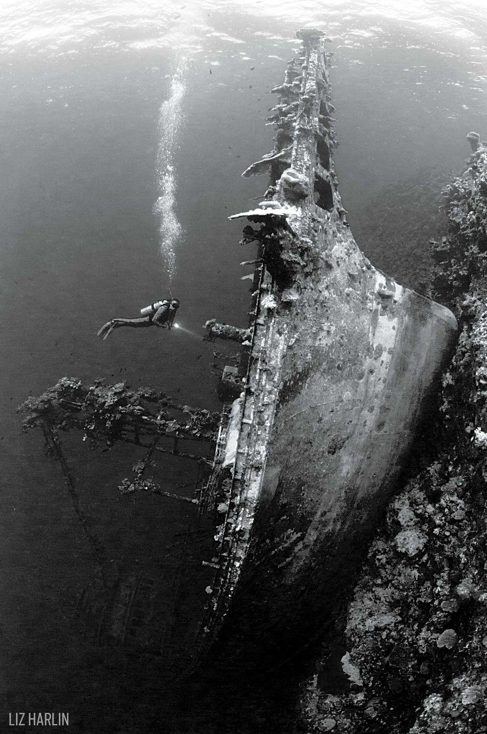Корабокрушението Taiyo