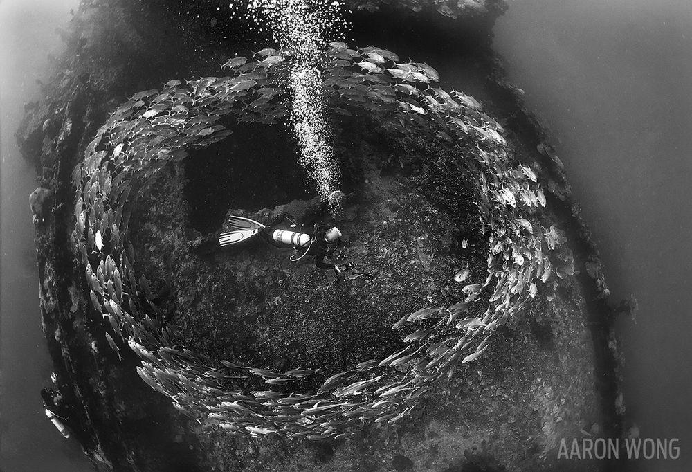 iro-maru-scuba-diver-palau-underwater-photo-shipwreck